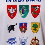 idf t shirt for combat units close up back